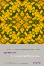HealCardN-83