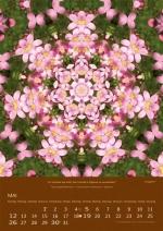 imagami-Kalender-2019-05
